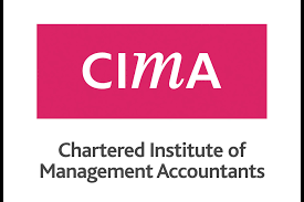 Chartered Accountants, Accountants, Certified Accountants